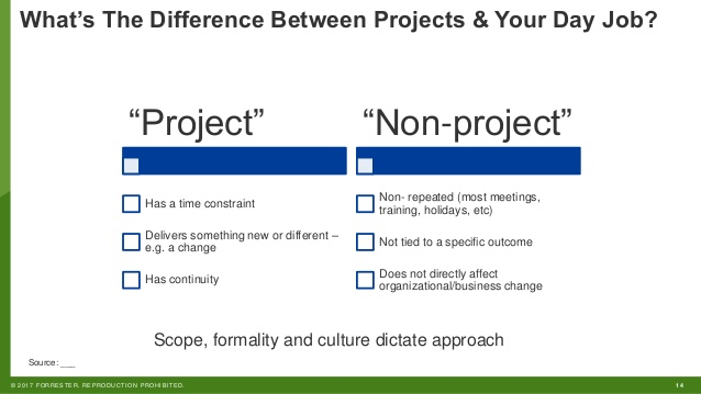 difference between project and non project work pdf